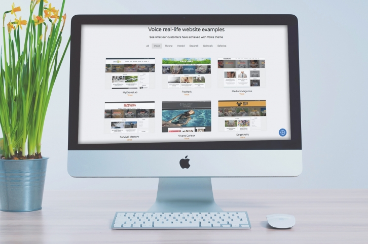 Do you really need a niche WordPress theme?