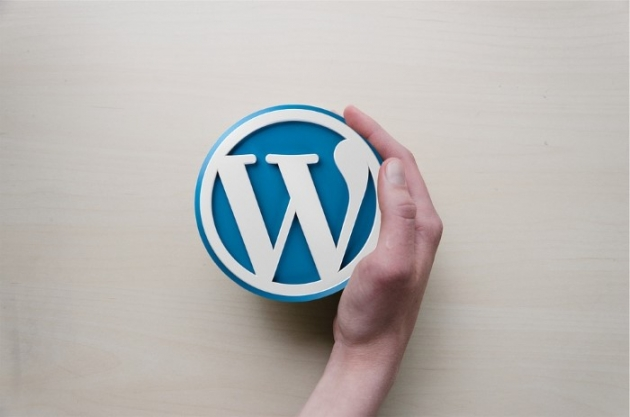 hand holding an WordPress logo noting that WP is better in WordPress vs Medium debate