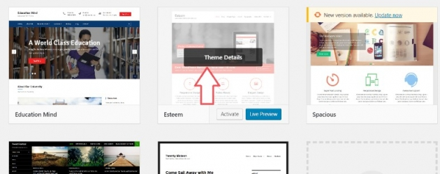 how to delete a WordPress theme when it's inactive, step 2 screenshot