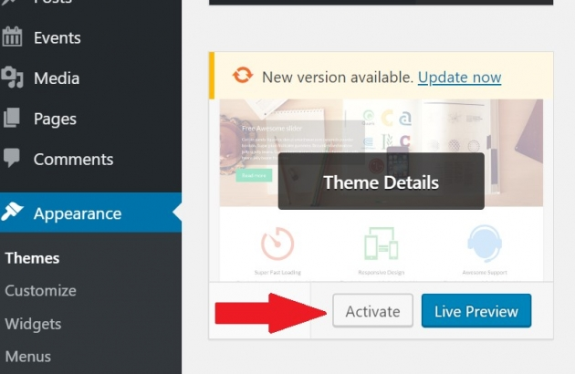 how to delete a WordPress theme when it's active screenshot example