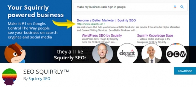 SEO squirly wordpress seo plugin