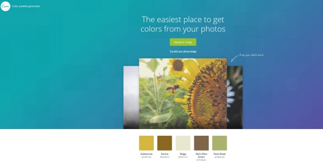 brand-color-palette-tools-canva-color-tool