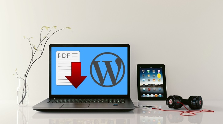 How to embed PDF in WordPress + 7 free plugins to choose from | Meks